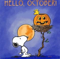 Snoopy and Woodstock Snoopy Halloween, Fall Halloween, Snoopy Christmas, Halloween Quotes, Halloween Cartoons, Halloween Pumpkins, Snoopy Images, Snoopy Pictures, Peanuts Cartoon