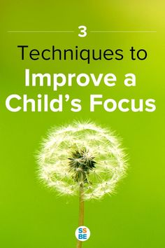 Does your child struggle to maintain his attention for a long time? Focus is an important skill—help your child improve focus with these 3 techniques.