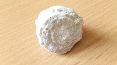 Мшанка (окаменелость)