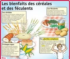 The benefits of cereals and starchy foods - French Reading/Fluency - Aliments Nutrition Education, Health And Nutrition, Food Vocabulary, Starchy Foods, Reading Fluency, Science, One Liner, Teaching French, French Food
