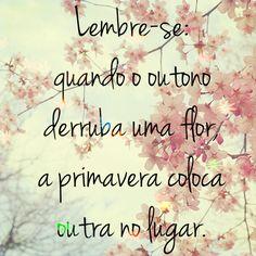 #primavera #frase #reflexão