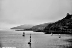 Polruan - England (Cornwall) Cornwall, England, Beach, Water, Photography, Outdoor, Gripe Water, Outdoors, Photograph