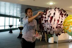 Penguin Pools, Exhibitions, Bristol, Penguins, Singapore, Unicorn, Ceiling Lights, Events, Decorations