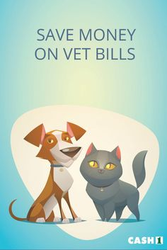 Vet bills can be expensive; can you provide your pet with the proper medical care? You can start saving money at the vet if you consider these simple tips.