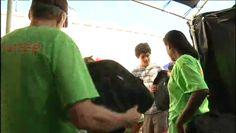 Durham Rescue Mission distributes school supplies - News 14
