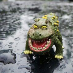 Colón in the rain