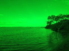 """Green landscape.  Looking through """"Total Internal Reflection"""" over Southern Moreton Bay and its Islands."""