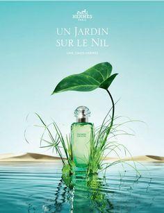 Un Jardin Sur Le Nil Hermes / 2005 / Jean-Claude Ellena (2)