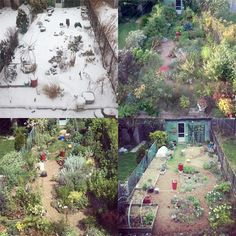 Seasons in my garden - You Grow Girl - Canadian gardening blog