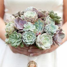 Encouraged for you to my website, with this occasion I am going to provide you with about Wedding Flowers Succulents Bouquet. 39 beautiful wedding bouquets that are unique. Floral Bouquets, Wedding Bouquets, Wedding Flowers, Bouquet Succulent, Succulent Ideas, Succulent Plants, Wedding Wholesale, Succulents Diy, Wedding Trends