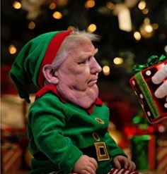 Wee little Trump John Trump, Donald Trump, Trump Christmas, Anti Religion, Boys Are Stupid, Republican Party, I Laughed, Presidents, Memes