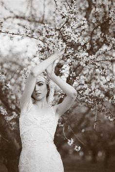 almondorchards by Stephanie Williams - This Modern Romance