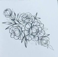 Image result for peony illustration