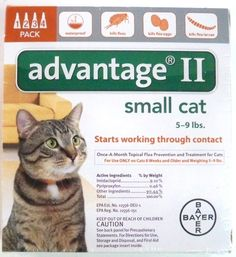 Advantage II for Cats 5-9 Lbs. ~~ 4 Months -- Read more at the image link. (This is an Amazon affiliate link)