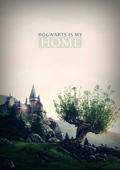 Hogwarts is my home. I've always said that truly great writing treats the setting as if it were another character, and for me, that's how Rowling made Hogwarts so truly magical. Think about the greats: Oz? Mundo Harry Potter, Harry Potter Fandom, Harry Potter World, Harry Potter Hogwarts, Always Harry Potter, Harry James Potter, Harry Potter Universal, Hery Potter, No Muggles