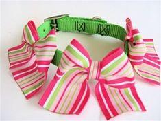 Pink Collar - Large Sunrise Stripe Bows