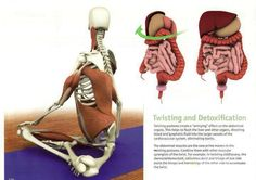 articles qigong for strengthening and massaging the internal organs