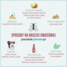 Sposoby na muszki owocówki. Jak pozbyć się muszek owocówek z kuchni? Home Hacks, Good Advice, Kitchen Hacks, Good To Know, Helpful Hints, Diy And Crafts, Place Card Holders, Cleaning, How To Plan