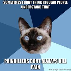 Oh AMEN. I hate when people say well why are your joints still hurting if you took pain medicine? Because it's inflammation that's causing them to hurt and pain medicine doesn't work on that only anti-inflammatory medicine does and I can't take that because it causes me to flare
