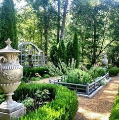 Herb and rose garden