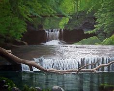 Glen Helen -- Blue Hole and Cascades Yellow Springs Ohio, Blue Hole, So Little Time, Google Images, Parks, Things To Do, Waterfall, Places To Visit, Bucket