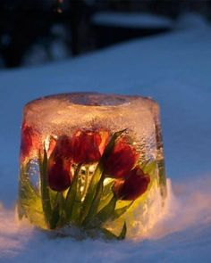 Freeze flowers or greens in Bundt pan or bucket with insert. Put flameless candle in center.  Very cute!!