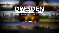 Dresden Wallpaper Collection I