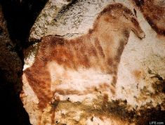 """Cro-Magnon Paintings years old) Lascaux Cave """"the Versailles of Prehistory,"""" Montignac, France Cave Paintings France, Lascaux Cave Paintings, Wall Paintings, First Photograph Ever Taken, Black History, Art History, Paleolithic Art, Cave Drawings, Art Premier"""