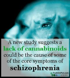 http://www.truthonpot.com/2013/07/31/marijuana-and-schizophrenia-new-study-explains-how-it-could-help/