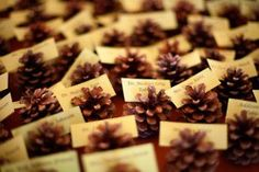pine cones for fall wedding decor