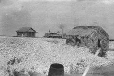 Oyster camps at Bayou Bruleau in Barataria Bay 6 July 1906