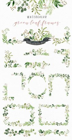 Watercolor Green Leaf Clip Art/Greenery/Eucalyptus/Wild Leaf/Spring/Green