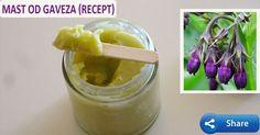 Postoje dve varijante pripreme za Gavez Mast ili kremu i obe ćemo vam preneti. Potrebno je 50 grama korena gaveza, čaša od jedan decilitar maslinovog ulja