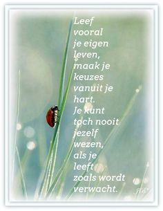 Leef vooral je eigen leven. New Quotes, Life Quotes, Inspirational Quotes, Creative Lettering, Wishes For You, One Liner, Verse, Just Do It, Slogan
