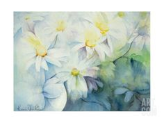 Daisies, Shasta Giclee Print by Karen Armitage at Art.com