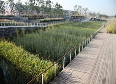 Shanghai Houtan Park / TurenscapeBuilt on a brownfield of a former industrial site, Houtan Park is a regenerative living landscape on Shanghai's Huangpu riverfront. The park's constructed wetland, ecological flood control, reclaimed industrial structures and materials, and urban agriculture are integral components of an overall restorative design strategy to treat polluted river water and recover the degraded waterfront in an aesthetically pleasing way.