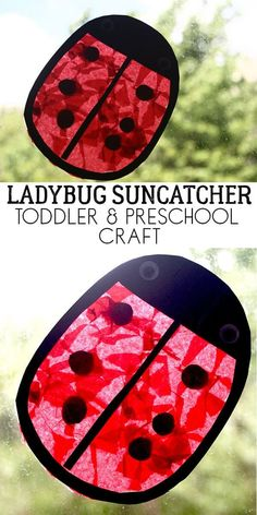 An easy and simple fun preschool craft for kids to make a Ladybug Sun Catcher great to match with Yoo Hoo Ladybug by Mem Fox. easycraftsforkids via Spring Art Projects, Toddler Art Projects, Easy Art Projects, Toddler Preschool, Toddler Crafts, Preschool Crafts, Preschool Themes, Sun Crafts, Insect Crafts