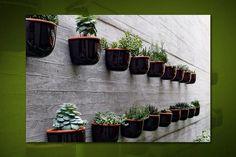 decoracao-para-jardim-de-inverno