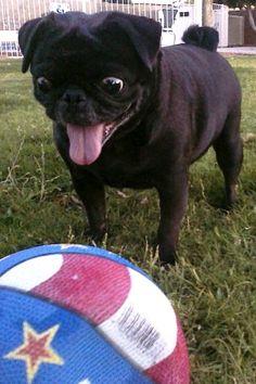 Errrmehgerrrd  a ball!