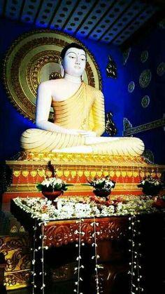 Sri Lanka Photography, Buddhist Philosophy, Dalai Lama, Beautiful Children, Buddhism, Om, Japan, Statue, Image