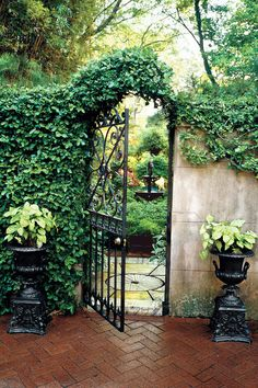 Secret Garden Gate - Choose the Perfect Garden Gate - Southernliving. This foliage-covered gate leads into a lush, private garden.