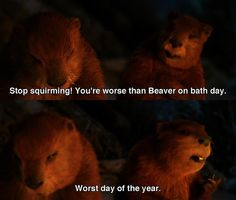 The Chronicles of Narnia - Worse than Beaver on bath day.