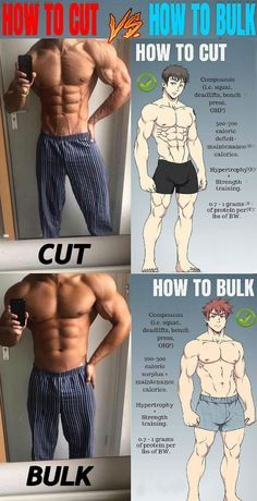 It should be noted that your bulking phase should always come before your cutting phase. This is because the primary purpose of your bulking workout should be to build as much lean muscle as. Abs Workout Routines, Gym Workout Tips, Post Workout, Muscle Diet, Muscle Fitness, Muscle Man, Gym Workout For Beginners, Weight Training Workouts, Chest Workouts