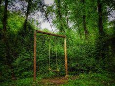 نوزدهم اردیبهشت نود و پنج  ابتدای چمستان استان مازندران  صحنه ای تا حدی توهمی و ترسناک  #iran #mazandaran #chamestan #tree #plant #nature #forest #jungle #sky #earth #soil #travel #recreation #iron #delusion #scary #طبیعت #سفر #مسافرت #جنگل #ترس by payam.photographer