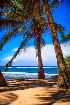 Tropical Paradise.    Beach near Mama's Fish House.  Paia, Maui, Hawaii  Rusted But Beautiful  Sonoma, Ca    -- A7 Photography  A7Photography.com