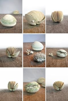 Handmade shell book.
