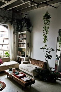 Steal This Look: Isabel Wilson's House Plants by Michelle Slatalla