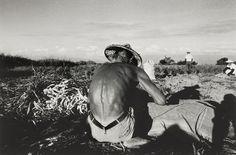 農人 張良一 攝影 60 x 85 x 2 cm