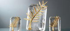 Festival di Cannes 2013 - La Palma dOro e tutti gli altri premi