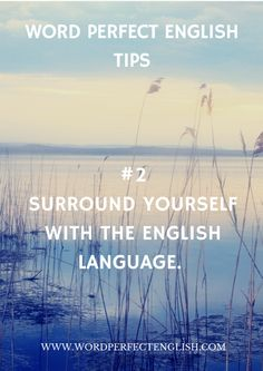 Surround yourself with the English language as much as you possibly can!